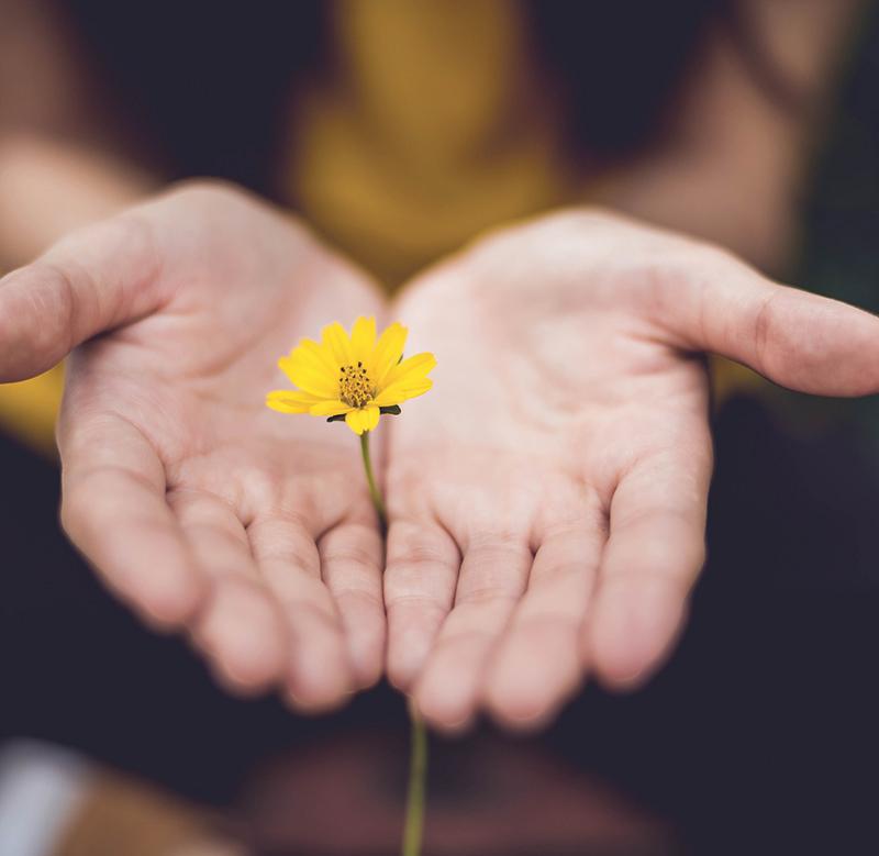 Accompagnement spirituel et thérapeutique